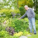 Man looking at his garden